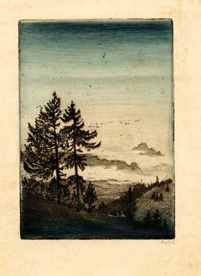 Landscape with fir trees